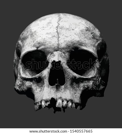 Scary Halloween Skull Head Vector Illustration