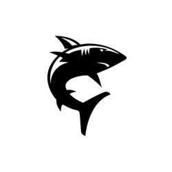 scary silhouette of shark the ocean predator vector illustration design