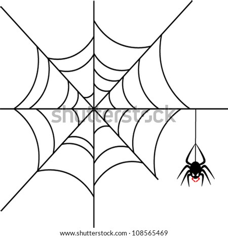 Scary spider over white background