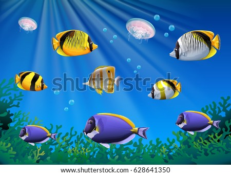 scene with colorful fish