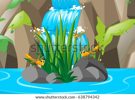 scene with dragonflies at