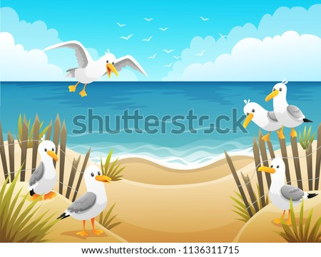 scenery with seagulls on beach