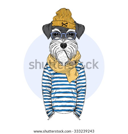 schnauzer dog sailor  nautical