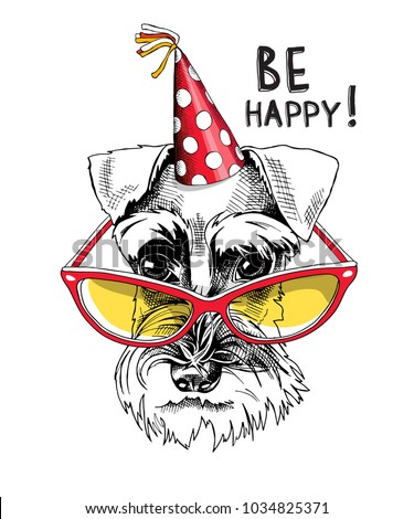 Schnauzer in a party cap and in a bright glasses. Vector illustration.