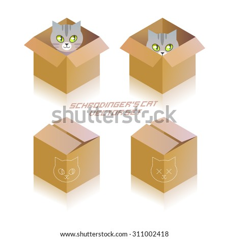 schrodinger's cat in the box