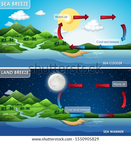Science poster design for land and sea breeze illustration Photo stock ©
