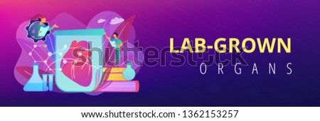 Scientists growing big heart in test tube in laboratory. Lab-grown organs, bioartificial organs and artificial organ concept on white background. Header or footer banner template with copy space.