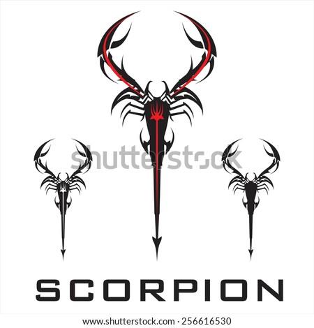 scorpion elegant stylized