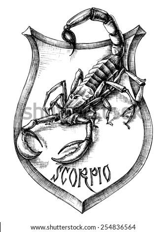 scorpion heraldry scorpio