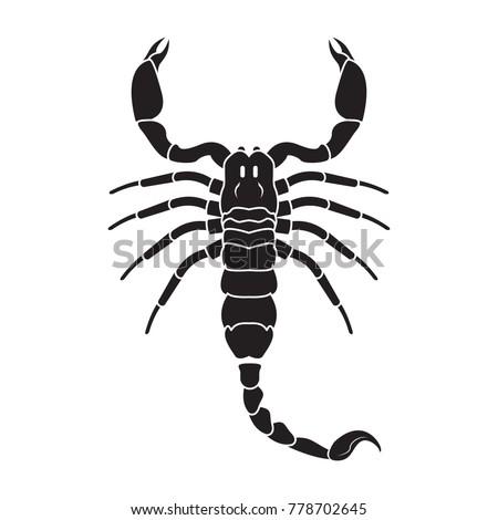 scorpion icon vector realistic