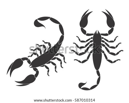 scorpion set isolated scorpion