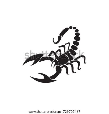 scorpion vector drawing