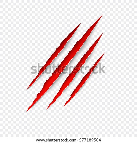 Scratches isolated on transparent background. Vector red scratch set. Claws scratching animal (cat, tiger, lion, bear) vector illustration.
