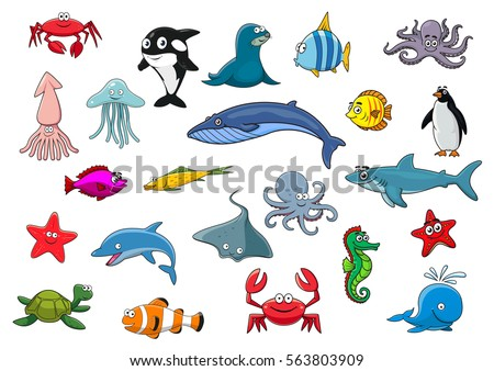 sea and ocean animals vector