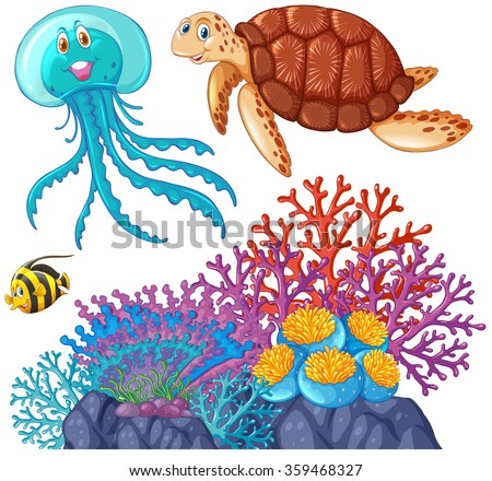 how to draw coral reef fish step by step