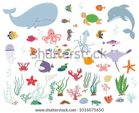 sea animals and water plants