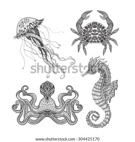 sea animals seahorse octopus