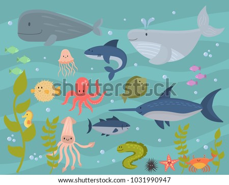 sea animals vector creatures