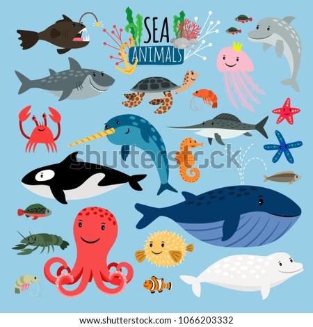 sea animals vector underwater