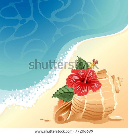 sea background with large shell