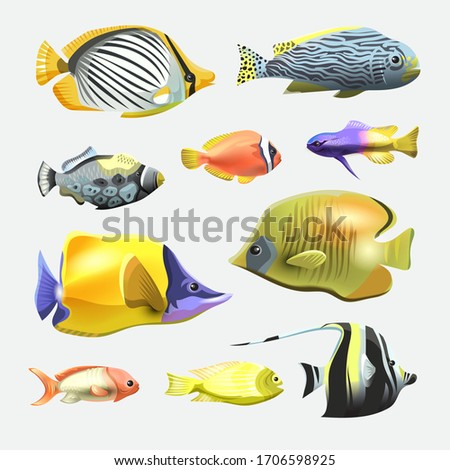 Sea beautiful fish collection isolated on white background. Flat design fish. Vector illustration, fishes. Fish collection. Aquarium modern flat fishes. Set of aquarium fishes