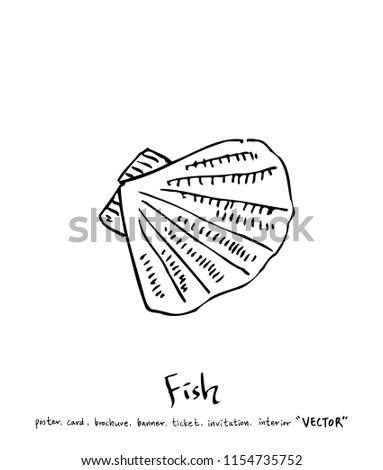 Cat Fish Diagram Label