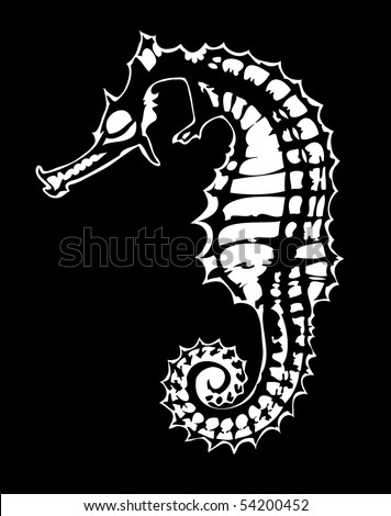 stock vector : Sea horse.