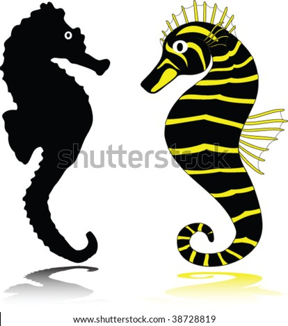 sea horse illustration. animal