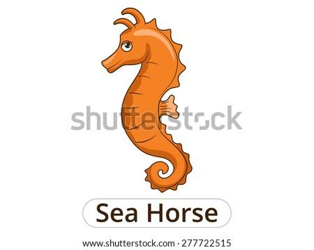 Sea horse underwater animal cartoon illustration for children