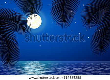 sea landscape with the moon and