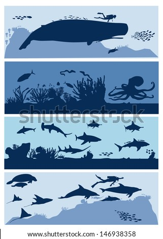 sea life aquarium  vector