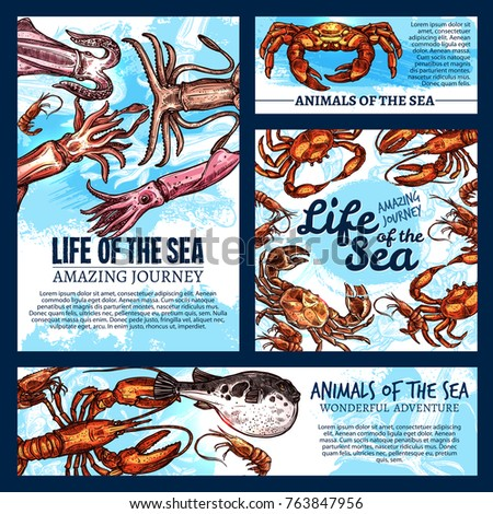 sea life fishes and animals