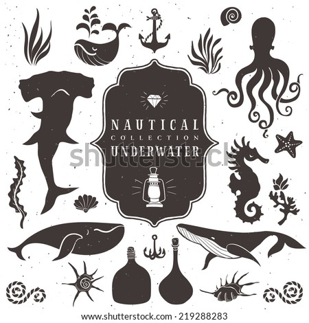 Sea life, marine animals. Vintage hand drawn elements in nautical style.Vol.2 Vector illustrations on white background.
