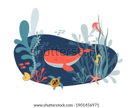 sea life vector hand drawn