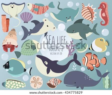 sea life vector ocean animals