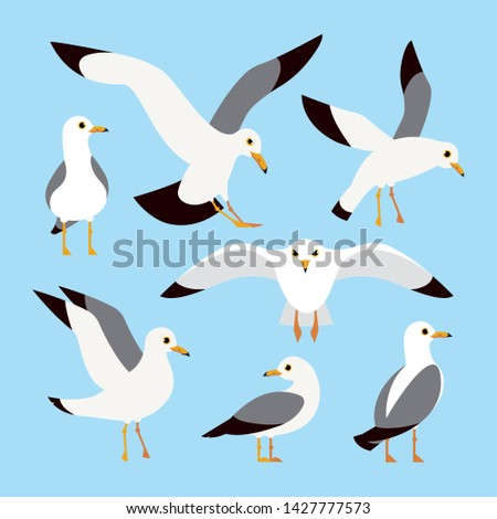 Sea, Ocean, Gull, bird in a vector flat style. Cartoon atlantic seabird, seagulls flying on blue sky background
