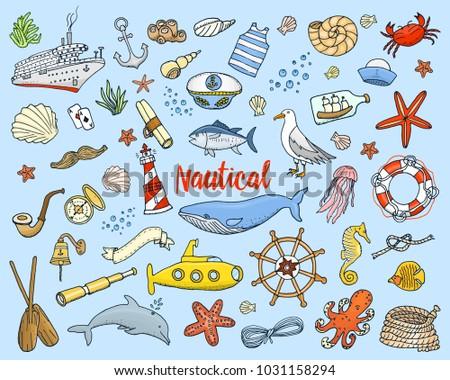 sea or marine and nautical life