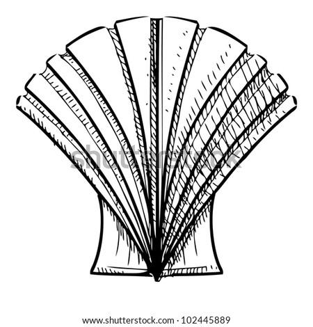 Ocean Shells Drawing Sea Shell Hand Drawing Sketch