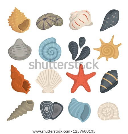 Sea shell vector icons in cartoon style. Set of clam mollusc. Ocean cockleshell. Stockfoto ©
