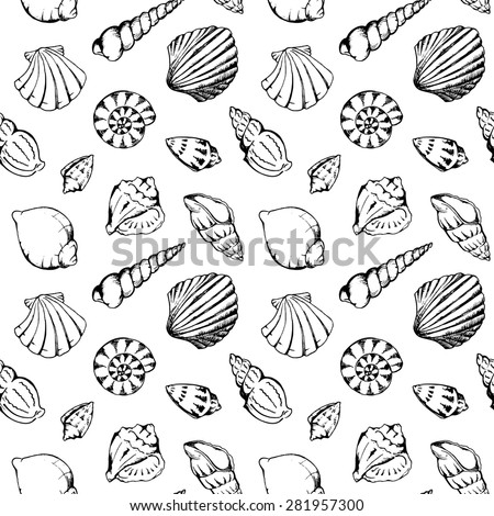 sea shells vector monochrome