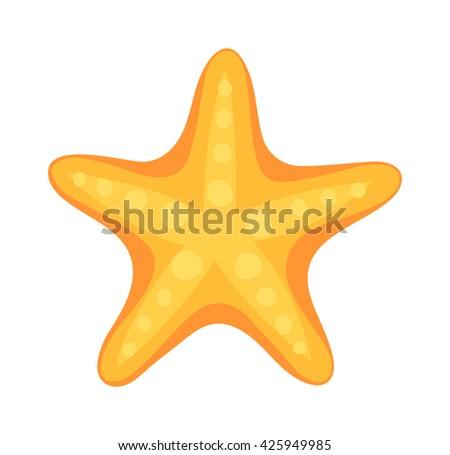 sea star caribbean starfish on
