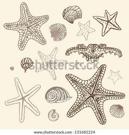 Sea Starfish collection. Hand drawn vector illustration.