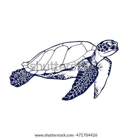 sea turtle line art coloring book illustration