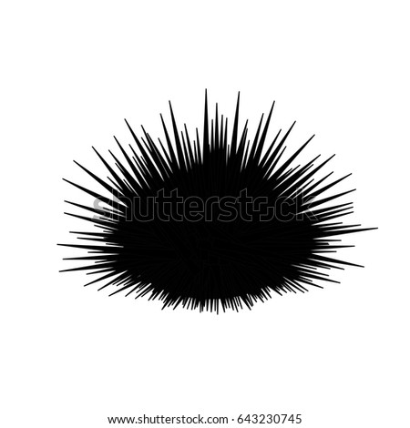 Sea urchin isolated on white background, vector illustration Stockfoto ©