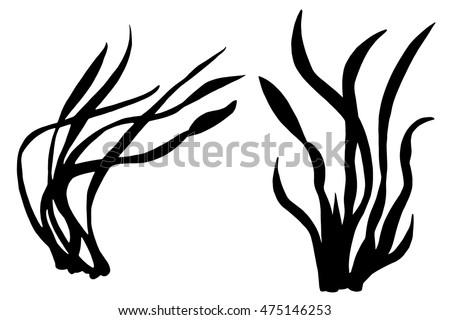 sea weeds black silhouettes