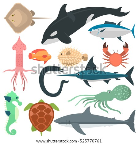 Shutterstock Sea wild animals vector illustration. Different fishes and other sea and ocean animals: whale, turtle, dolphin, squid and fish sword