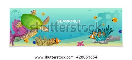 sea world underwater life