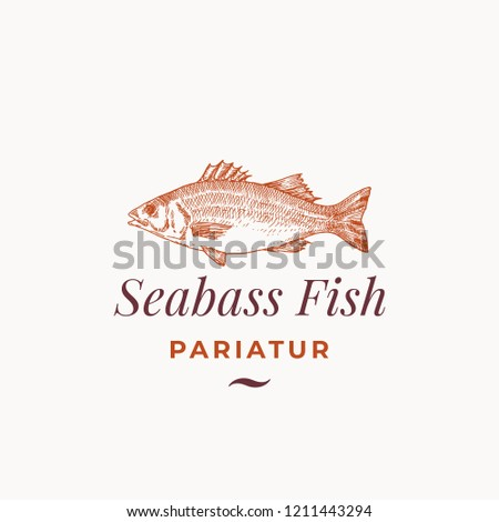 Seabass Fish Abstract Vector Sign, Symbol or Logo Template. Hand Drawn Sea Bass Sketch with Classy Retro Typography. Premium Vintage Vector Emblem. Isolated.