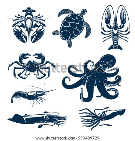 seafood  marine animal icon set