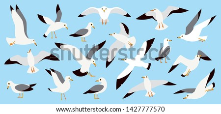 Seagulls flying in blue sky, cartoon atlantic seabird. Sea, Ocean, Gull, bird set in a vector flat style. Big oceangull pack isolated on sky background